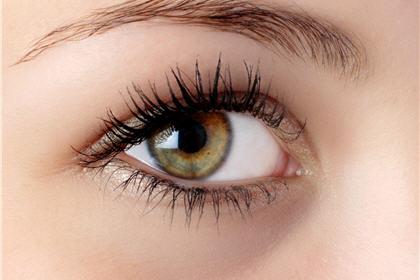 【眼睛養生法】2款中醫保健湯水助你驅走黑眼圈