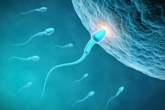 不育福音 透明質酸助受孕