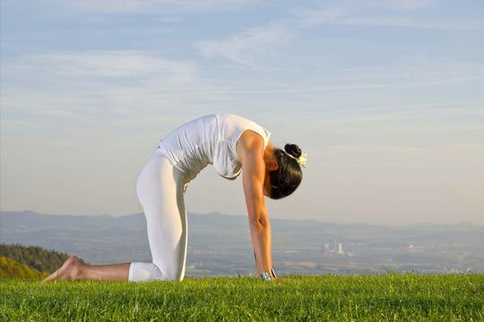 7招必學瑜伽  腰背不再痛!