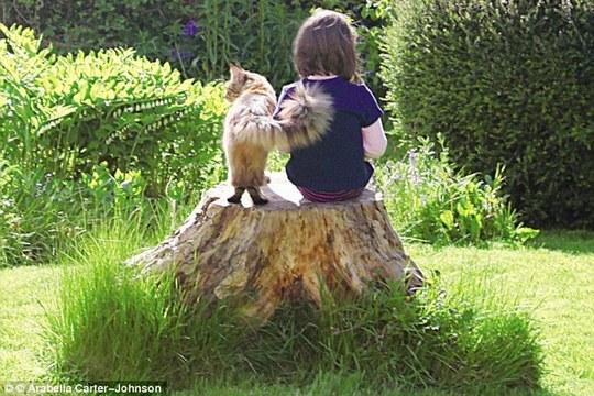 一隻貓改變自閉女孩的世界!