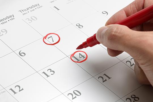 date, schedule
