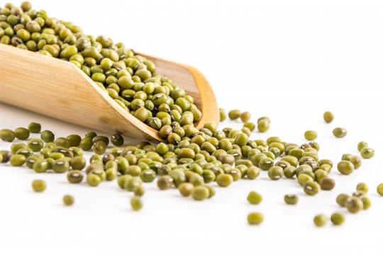 【健身攻略】40種高蛋白食物究極列表