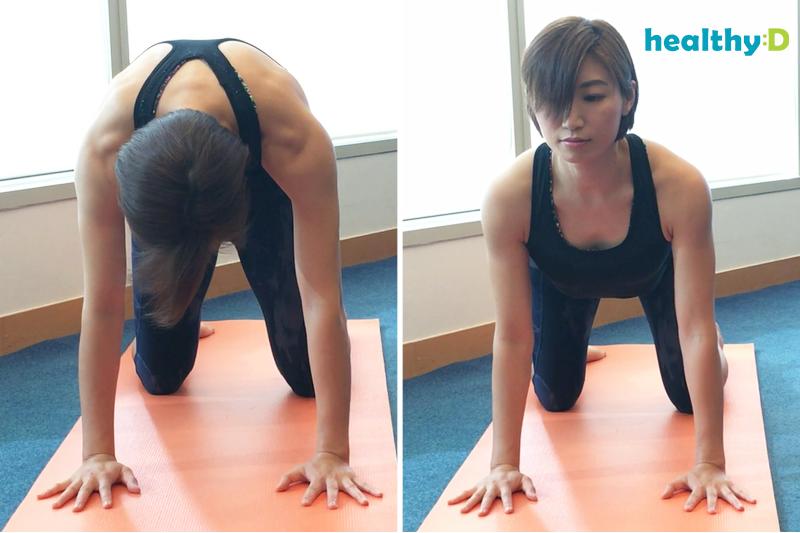 【有片】瑜伽紓腰痛:貓式伸展