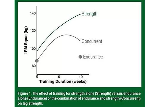 【運動科學】做帶氧會影響增肌和力量?(迷思篇)