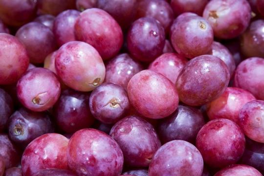 9大紫色食物 保心護眼抗衰老