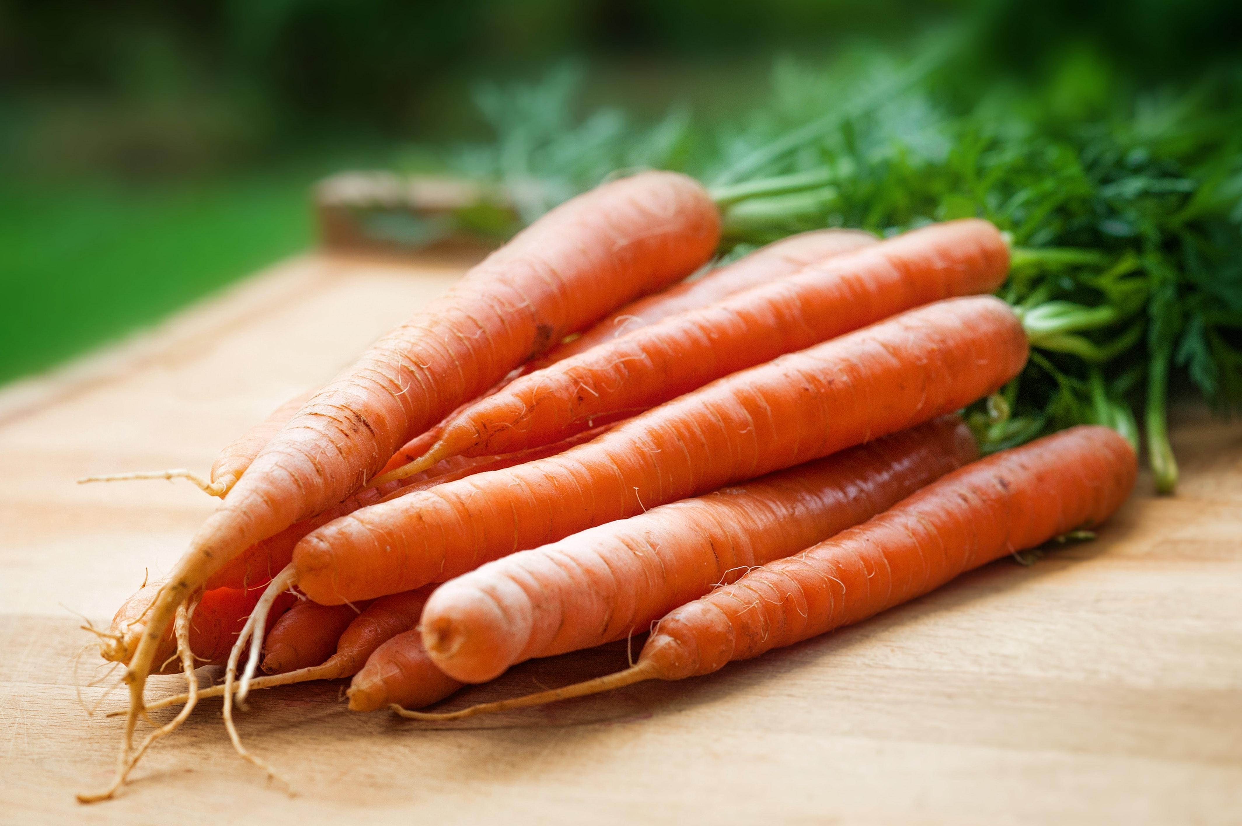 【番茄好處】秋季皮膚保養攻略 一文了解改善皮膚食材推介