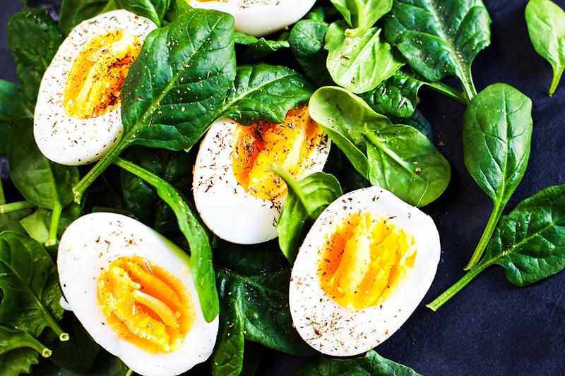 【雞蛋千古之謎】吃蛋白較健康?蛋黃原來是「營養寶庫」