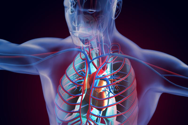 血管堵塞可致男人不舉  冠心病伴隨性功能失調問題