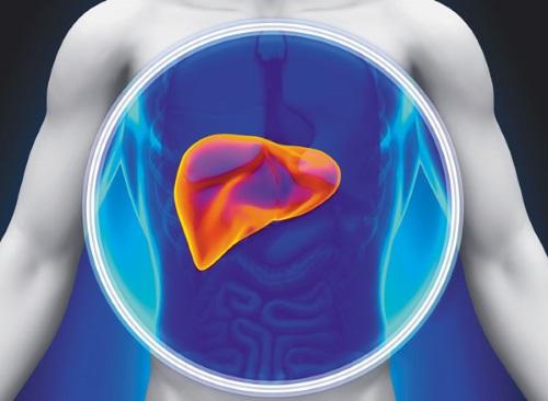 驗肝其實驗啲乜?帶你認識5大肝臟檢查項目