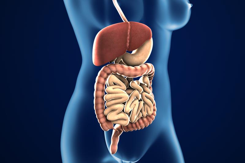 【腸道健康】益生菌怎樣吃? 解開5個益生菌迷思