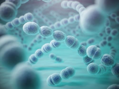 長者及幼童注意!接種肺炎球菌疫苗防致命併發症