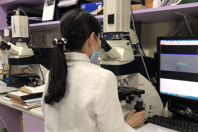 【懷孕準備】中大研究:全基因組測序技術助找慣性流產基因