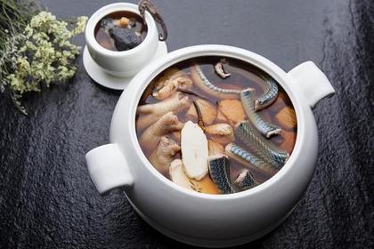 「蛇羹要配糯米飯?」秋冬食蛇小百科