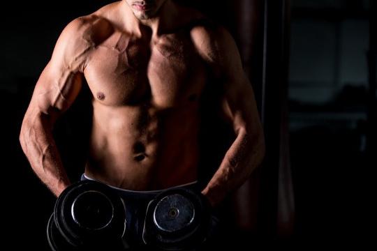 【運動訓練】生理學入門—肌肉篇