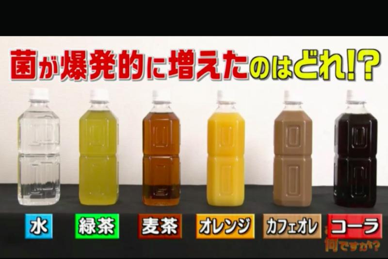 【樽裝飲品放隔夜】日本電視節目測試發現瓶口含菌量急升4000倍