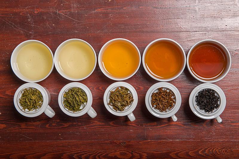 紅茶、綠茶、烏龍茶是出自同一茶葉? 茶色取決於氧化作用