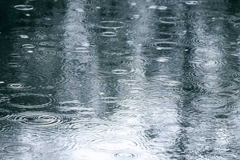 芒種.二十四節氣2021|梅雨天易睏倦濕疹發作 中醫教煲祛濕湯水