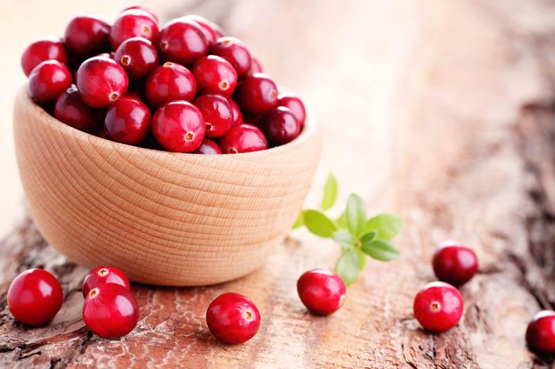 小紅莓5大優點逐個數 抗氧化兼減低患尿道炎風險