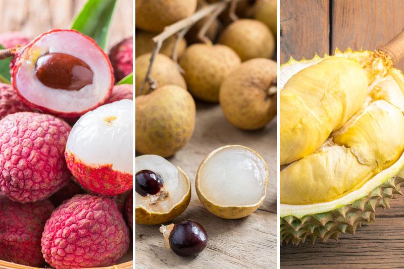 當造水果|荔枝榴槤太熱氣?中醫有緩解方法